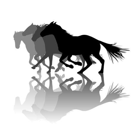 Silhouettes of horses with shadows running