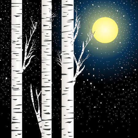 Birch trees against night sky with full moon and stars