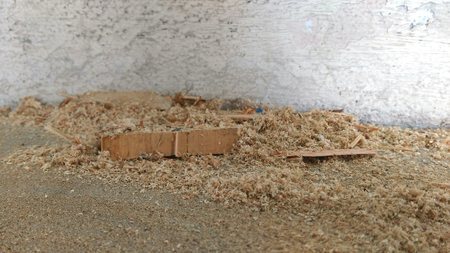 sawdust: Wood Sawdust Texture Background, Brown sawdust from hardwood
