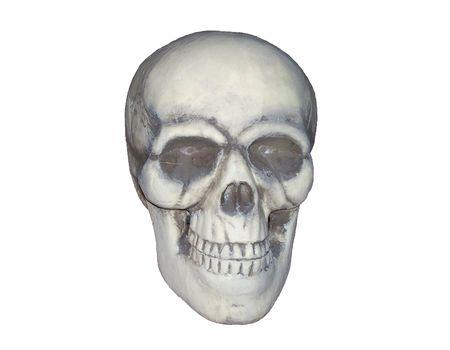 Skelton head isolated on white