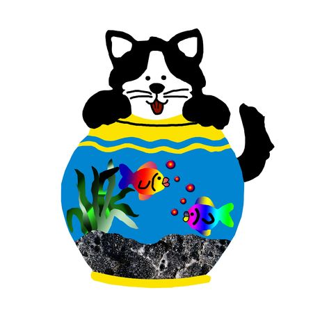 comical cat looking in fish bowl photo