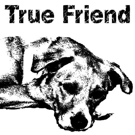 犬の男のベスト フレンド 写真素材