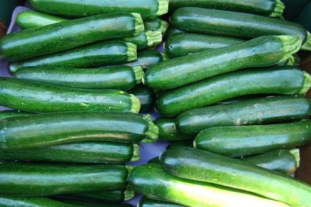 fresh organic  zucchini             photo