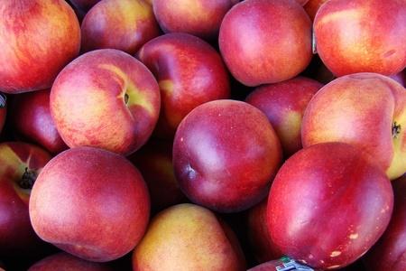 fresh organic nectarines                           photo