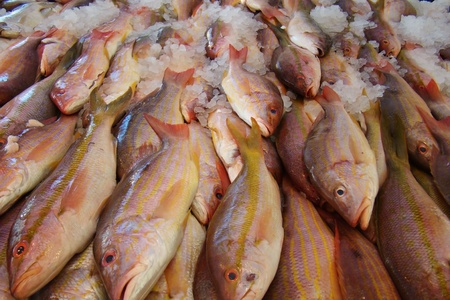 fresh fish on ice at a fish market