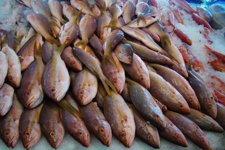 fresh fish on ice at a fish market