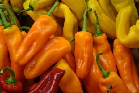 verse biologische hete pepers Stockfoto