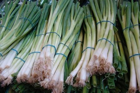frresh organic green onions