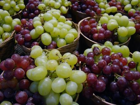 新鮮なブドウ 写真素材