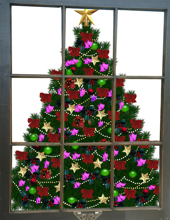 Christmas Tree Through the Window