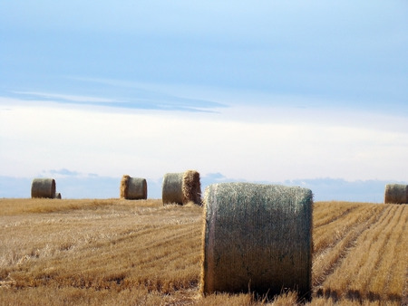 hay stack against blue sky landscape
