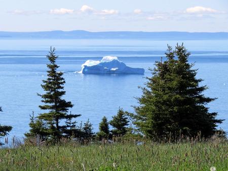 floe: iceberg background