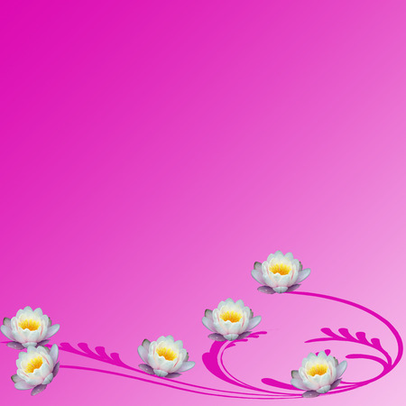 Pink floral design Stock Photo