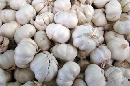 garlic bulbs Stock Photo