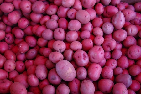 frsh red potatoes