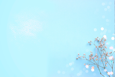 Baby blue background with small white flowers and bokeh, with copy space