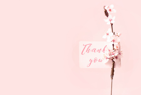 stock photo wild cherry flowers and note holder with thank you note on pink background