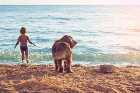 Little girl and the dog on the beach