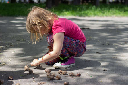 Little girl playing in the park, collecting snails Standard-Bild