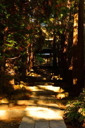 kamakura: temple of kamakura