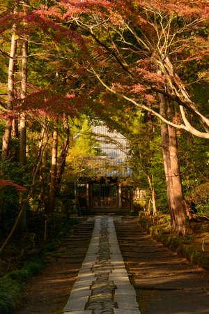 kamakura: autumn in kamakura japan Stock Photo