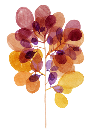Watercolor decorative nature element branch