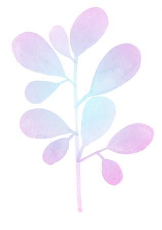 Watercolor bright decorative nature element branch