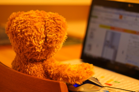 The bear which operates a PC Banco de Imagens