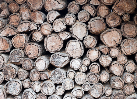stack of firewood: background of firewood stack