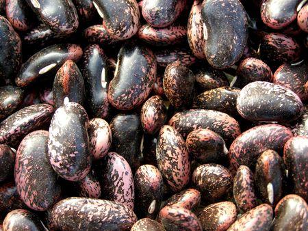 Bean texture photo