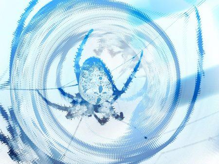 contrastive: Virtual spider Stock Photo