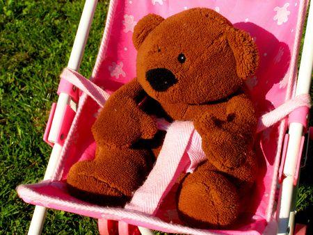 contrastive: teddy bear in buggy