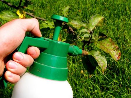 contrastive: garden toxic spray