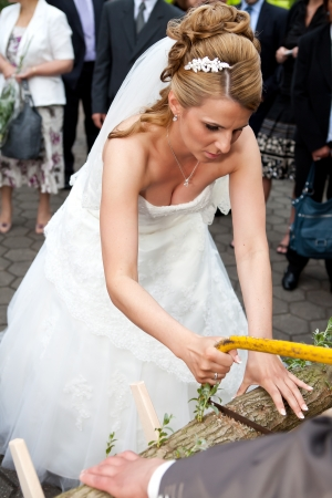 blonde busty bride with diadem and veil is sawing with a saw a log on her wedding ceremony    this wood sawing is a tradition in several countries  european culture  especially in germany