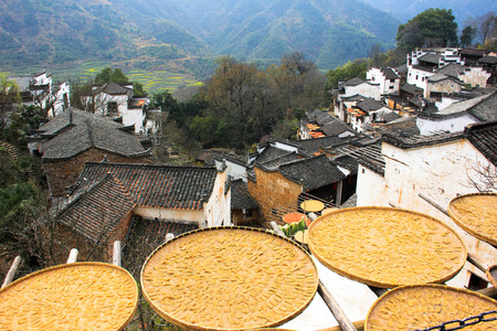 roof profile: Sun-drying their self-harvest product
