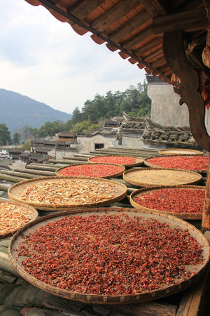 roof profile: Drying of agricultural products Stock Photo