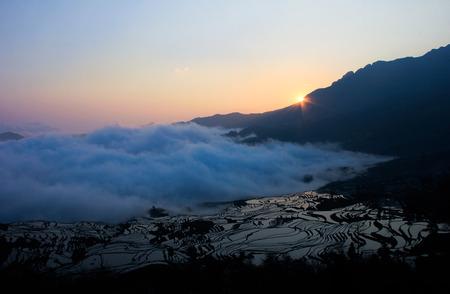 yuan yang: Terraces
