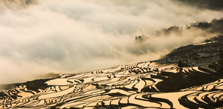 yuanyang: Yuanyang Terraces Stock Photo