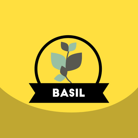 flat vector icon design collection  Kitchenware seasoning basil