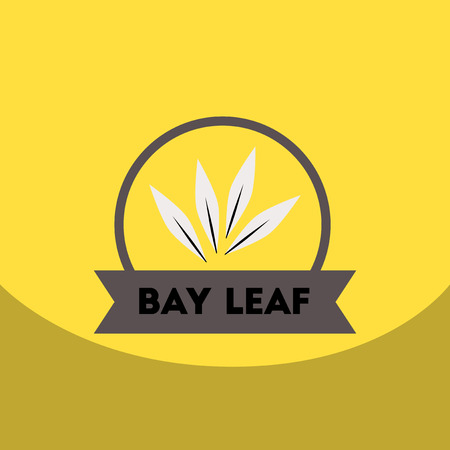flat vector icon design collection  Kitchenware seasoning bay leaf