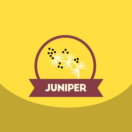 flat vector icon design collection  Kitchenware seasoning juniper Illustration