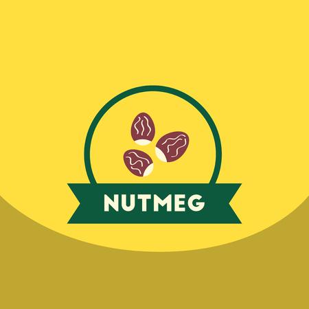 nutmeg: flat vector icon design collection  Kitchenware seasoning nutmeg Illustration