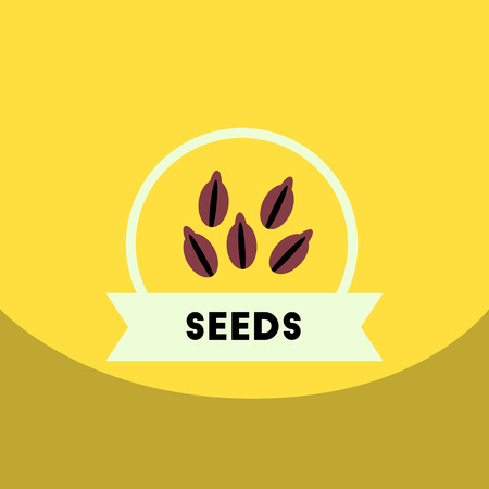 flat vector icon design collection  Kitchenware seasoning seeds Illustration