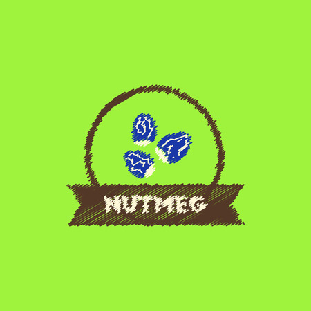 flat icon design collection Kitchenware seasoning nutmeg