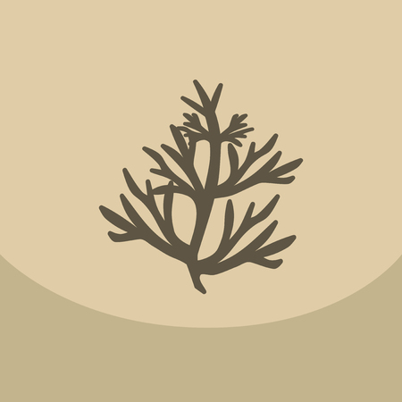 condiment: Vector dill illustration on color background. Botanical herbal icon condiment.