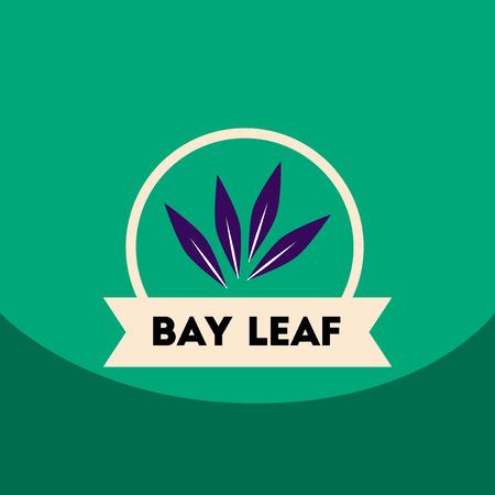 flat vector icon design collection Kitchenware seasoning bay leaf Illustration
