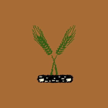 winter wheat: flat vector icon design collection ears of wheat