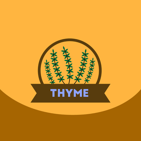 flat vector icon design collection Kitchenware seasoning thyme