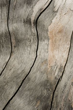 muster: background wood Stock Photo