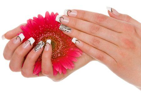 manicure Standard-Bild